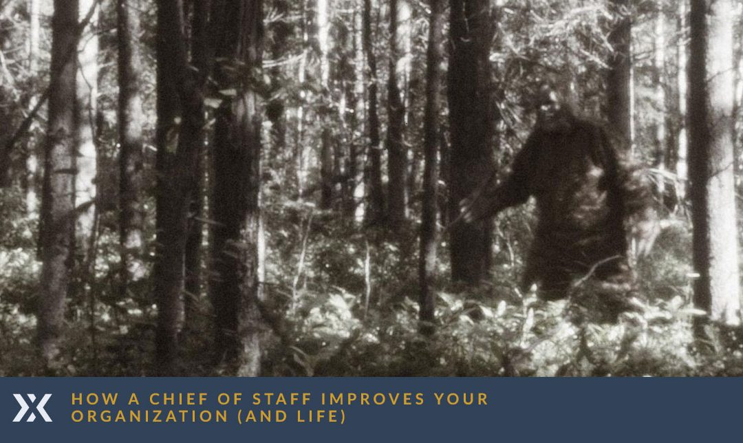 How a Chief of Staff Improves Your Organization (and Life)